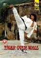 TIGER OVER WALL (DVD)