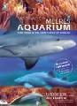 Meeres Aquarium (DVD)