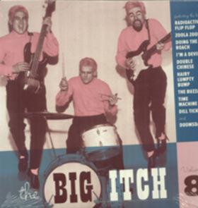 VARIOUS ARTISTS - BIG ITCH Vol. 8