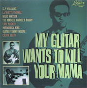 VARIOUS ARTISTS - My Guitar Wants To Kill Your Mama