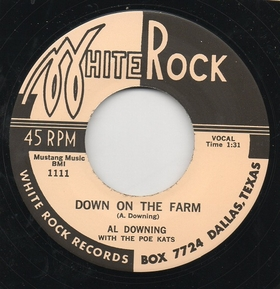 AL DOWNING WITH THE POE KATS - Down On The Farm