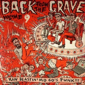 VARIOUS ARTISTS - Back From The Grave Vol. 9