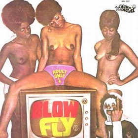 BLOW FLY -  Blow Fly On TV.