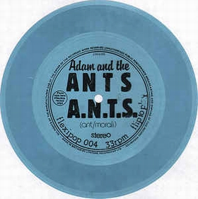 ADAM AND THE ANTS - A.N.T.S.