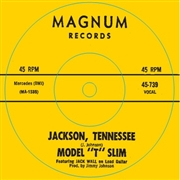 MODEL T SLIM - Shake Your Boogie