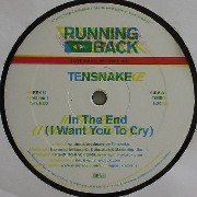 Tensnake - In The End (I Want You To Cry)