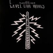 Odd Nosdam - Level Live Wires (LP)
