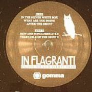 In Flagranti - In The Silver White Box