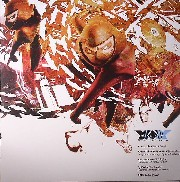 Ninja Tune presents - XX 12inch Sampler 5