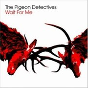 Pigeon Detectives - Wait For Me