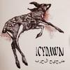 ICYDAWN