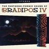 BRADIPOS IV