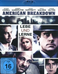 AMERICAN BREAKDOWN - LEBE UND LERNE - David Brooks, Erik MacArthur