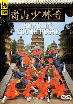 SHAOLIN YOUTH POSSE (DVD)