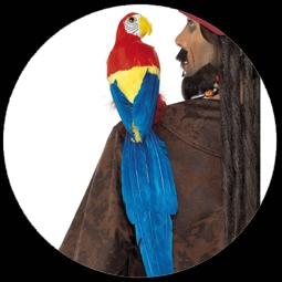 kost me von k 39 n 39 k papagei attrappe costumes verkleiden karnveval schweiz. Black Bedroom Furniture Sets. Home Design Ideas