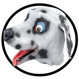 Dalmatiner Maske Erwachsene - Klicken für grössere Ansicht
