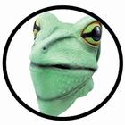 Froschmaske grün