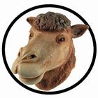 Kamel Maske Erwachsene