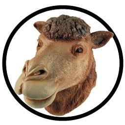 Kamel Maske Erwachsene - Klicken f�r gr�ssere Ansicht