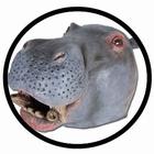 Nilpferd Maske Erwachsene (Flusspferdmaske)