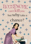 1 x HOUSEWORK CANT KILL YOU - GESCHIRRTUCH