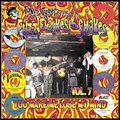 VARIOUS ARTISTS - FUZZ, FLAYKES & SHAKES Vol. 7
