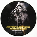 JEFFREY LEE PIERCE - Anarchic Blues