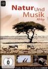 Natur und Musik Afrika
