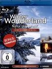 Winter Wonderland - Natur und Musik
