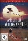 Amy und die Wildgänse - Special Edition
