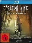 Carlton Mine - Schacht der Verdammten