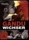 Gandu - Wichser (OmU) [SE]
