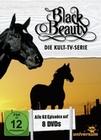 Black Beauty - Komplettbox [8 DVDs]