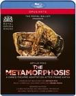 The Metamorphosis - The Royal Ballet