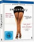 Secretary - Premium Edition