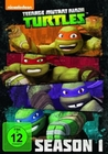 Teenage Mutant Ninja Turtles - Season 1 [4 DVD]