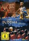 Little Buddha - Digital Remastered