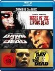 Zombie - 3er Box