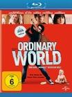 Ordinary World - Eine ganz normale Rockstar...