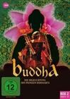 Buddha - Die Erleuchtung des... Box 2 [3 DVDs]
