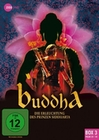 Buddha - Die Erleuchtung des... Box 3 [3 DVDs]