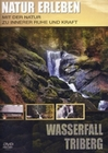 Natur Erleben - Wasserfall Triberg
