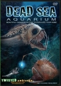 3 x TWISTED AMBIENCE - DEAD SEA AQUARIUM