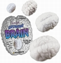 1 x WACHSENDES HIRN - GROWING BRAIN