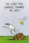 1 x PEANUTS THE SIMPLE THINGS - POSTER