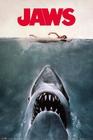 Der Weisse Hai Poster Jaws Key Art