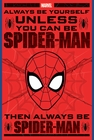 Spider - Man Always Be Yourself Poster Comic