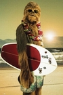 x STAR WARS POSTER CHEWBACCA SURFIN'