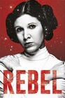 x STAR WARS POSTER REBEL PRINZESSIN LEIA