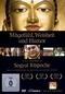 Sogyal Rinpoche - Mitgefühl, Weisheit... (OmU)